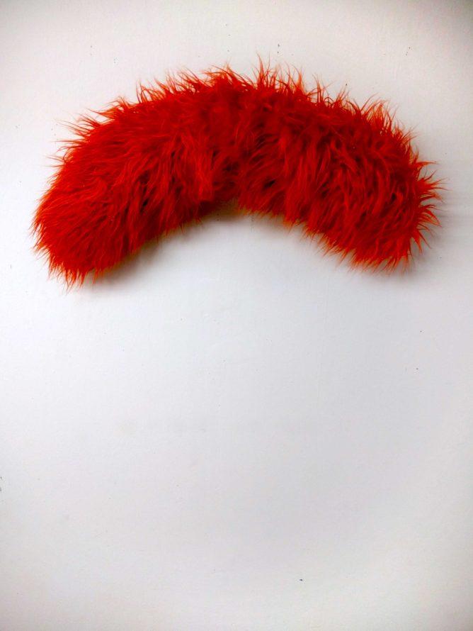 a red fur curl